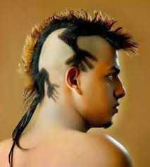 Napravite frizuru osobi iznad. Najludje-frizure-na-svetu-top-100-38
